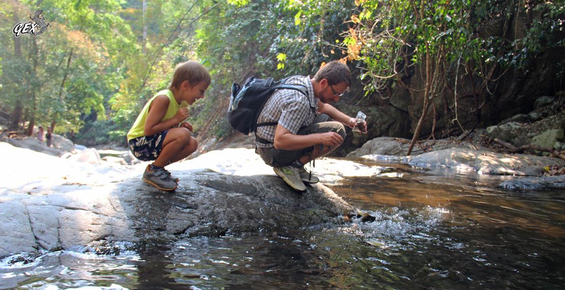 Водопад Палау