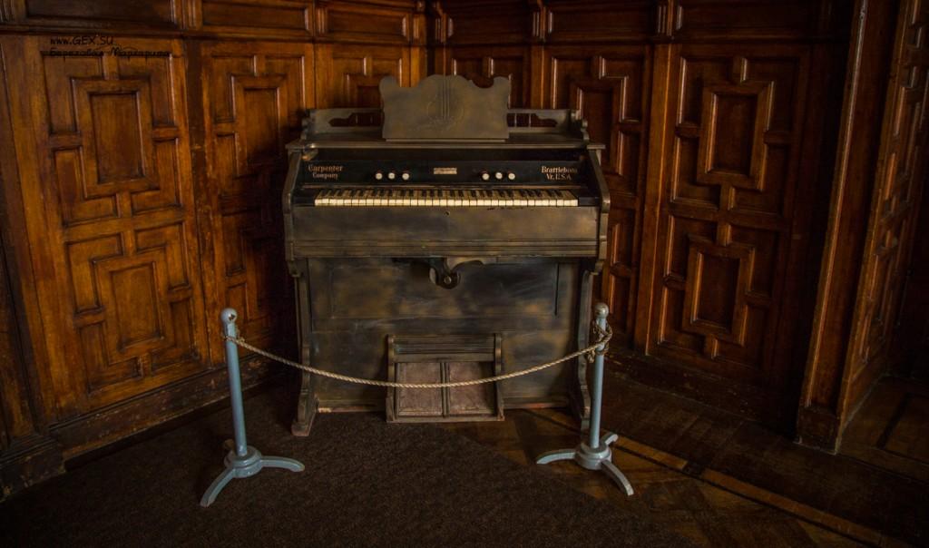 Музыкальный инструмент на Дачи Стамболи