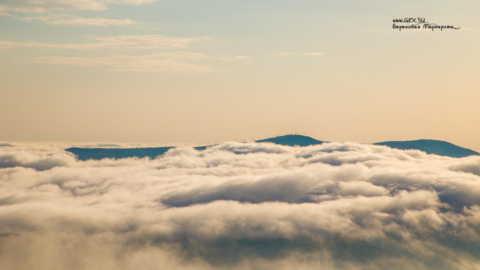 Мы с меганом в тумане