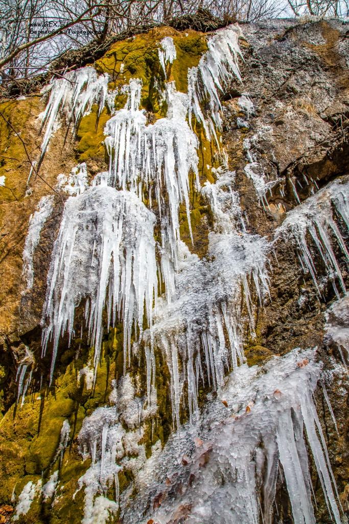 замёрзший ручей в лесу