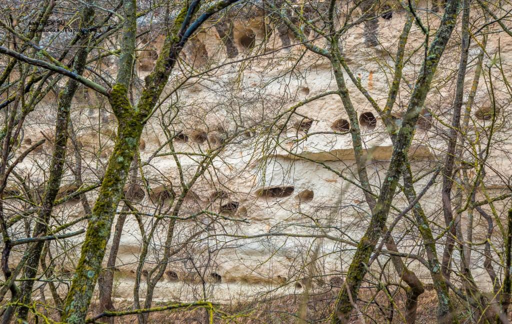 норки в горе Крокодил