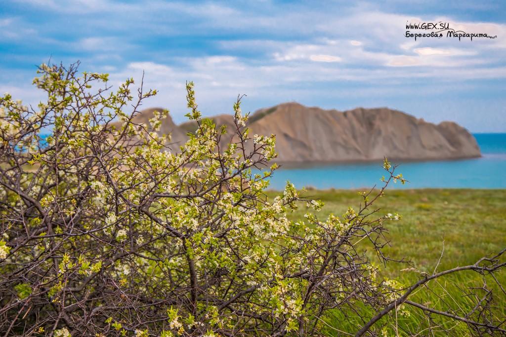 весна в тихой бухте