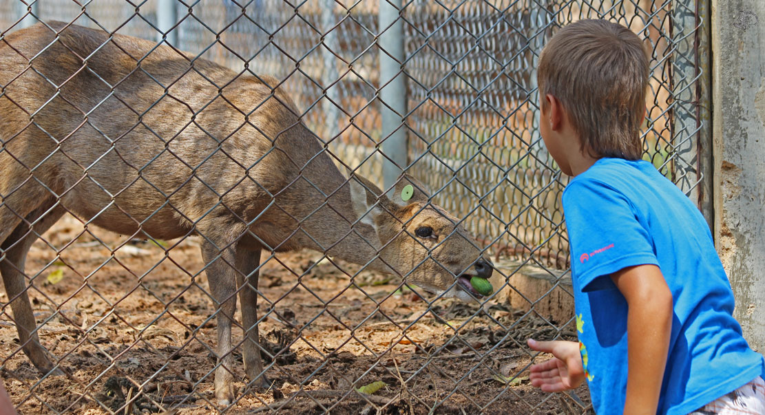 Зоопарк в Хуа Хине