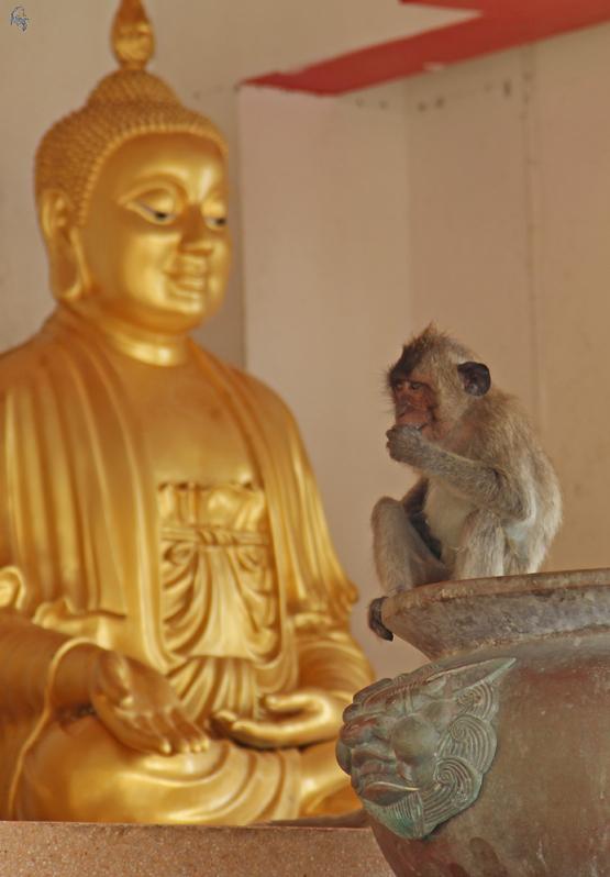 гора обезьян в Хуа Хине