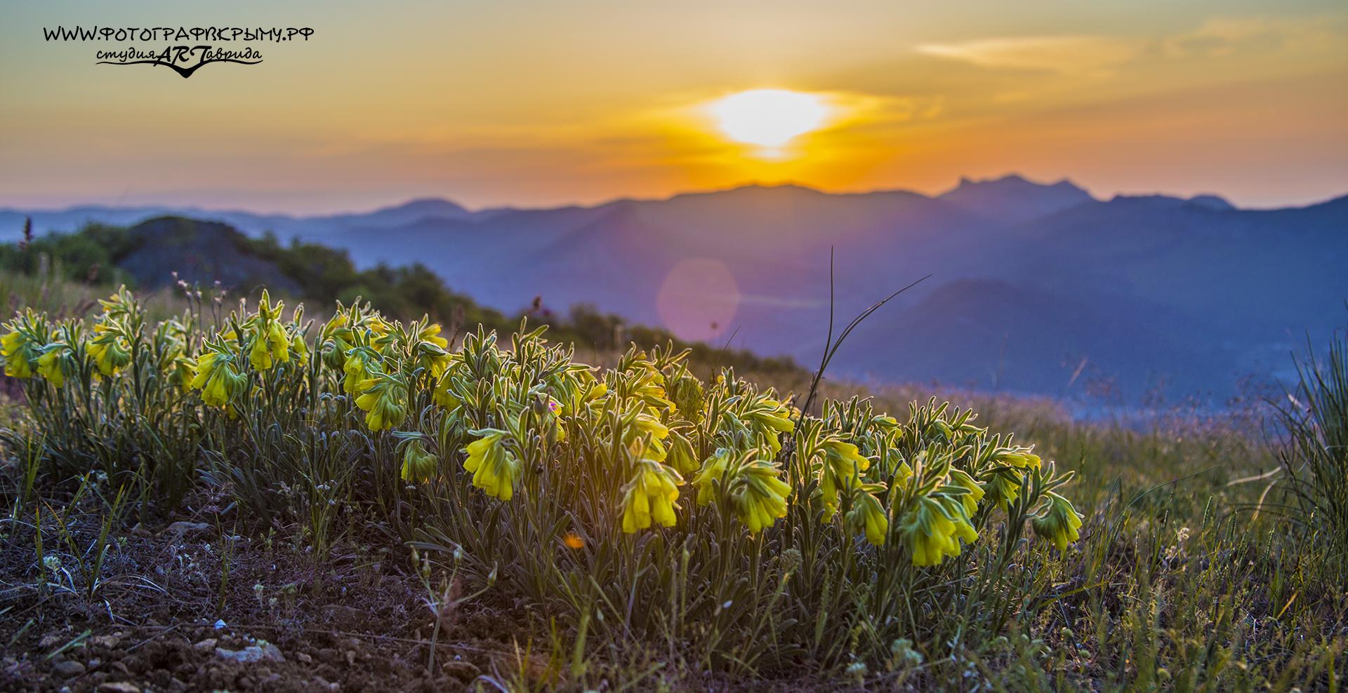рассвет с горы перчем