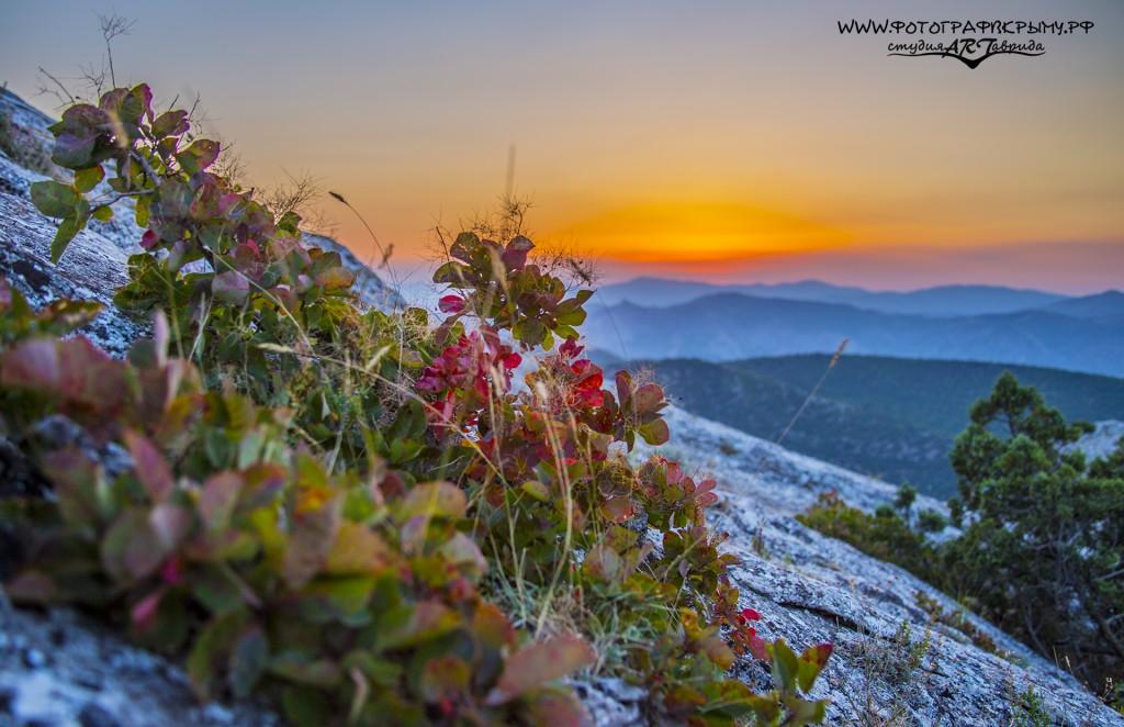 закат с вершины сокола