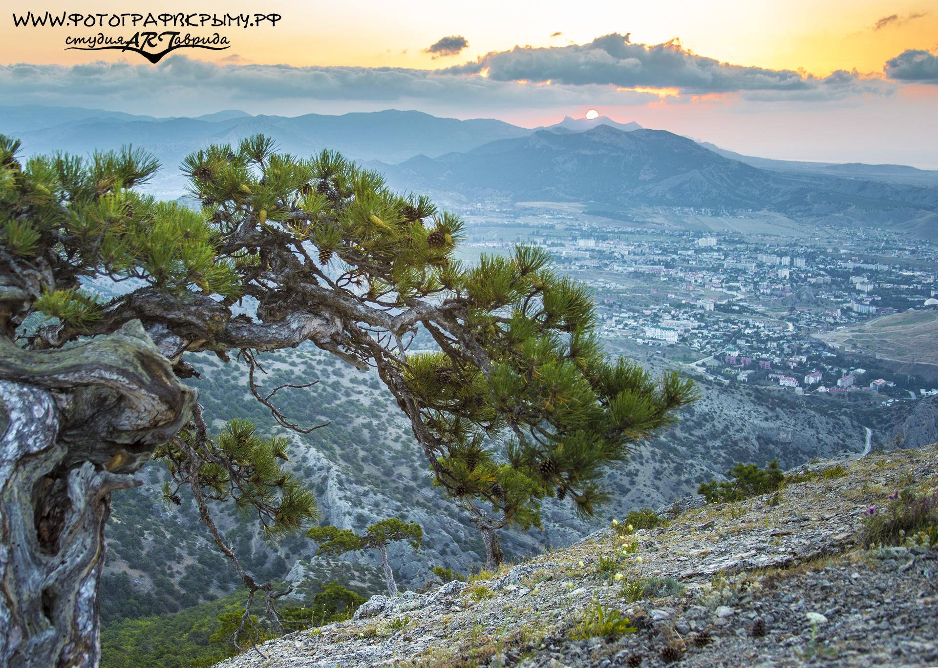 рассвет с горы сокол