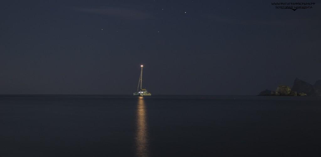 ночной судак