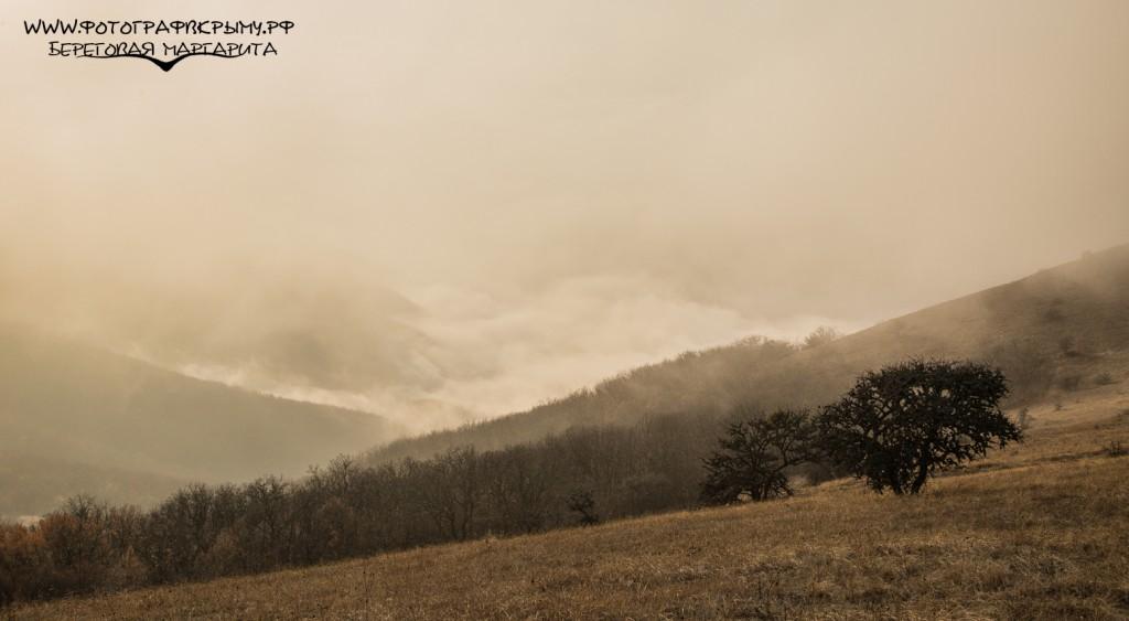 крымский туман в судаке