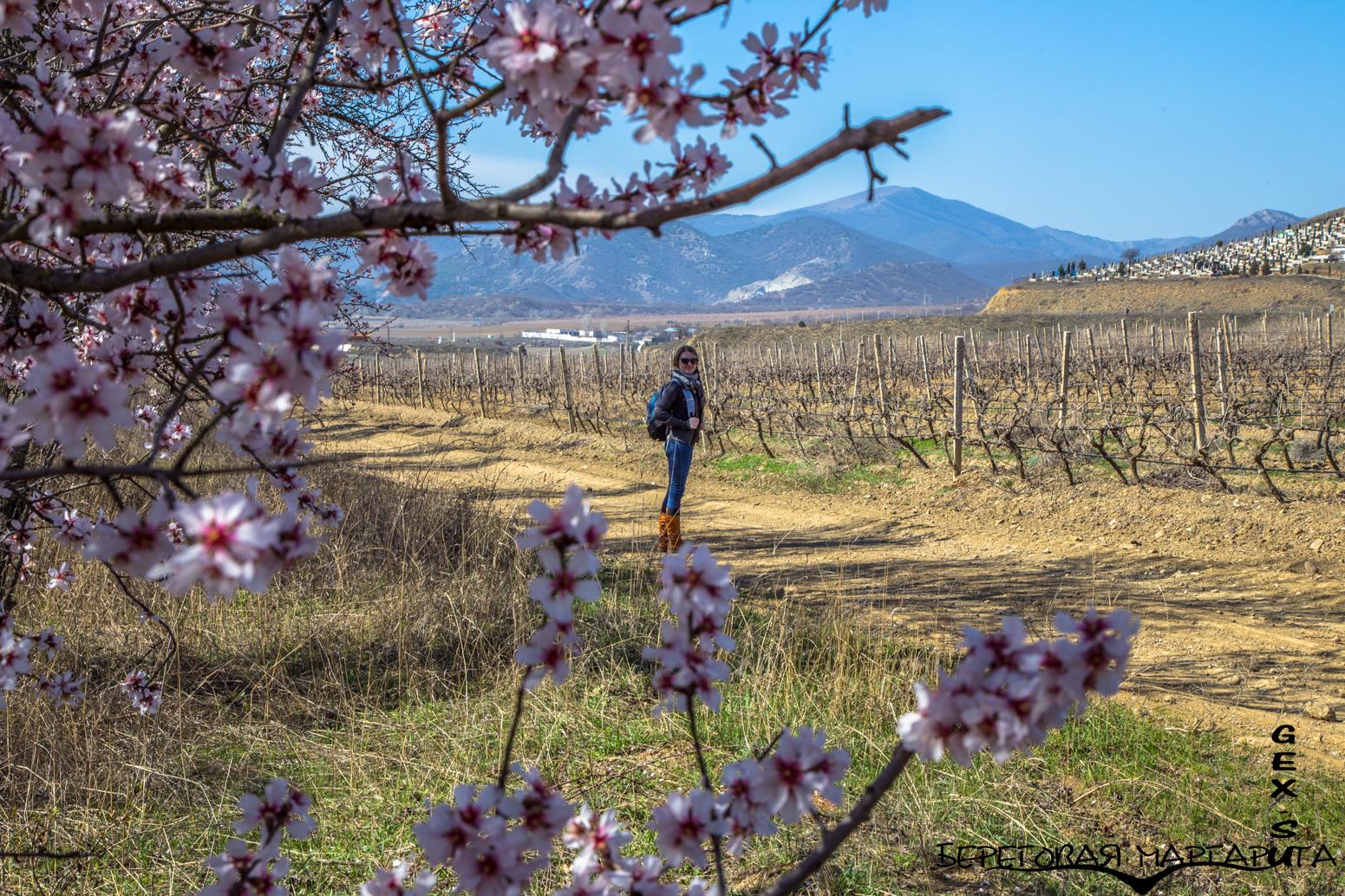 весна в судаке