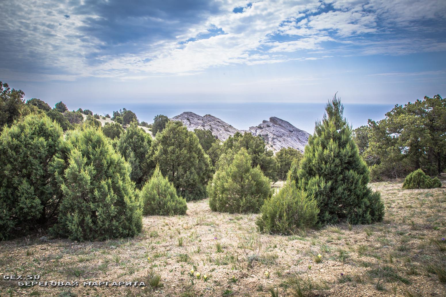 вершина горы Алчак в судаке