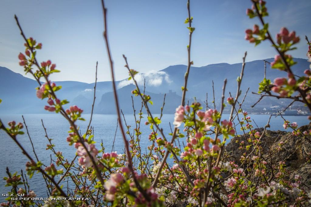 вид с горы Алчак