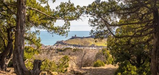 Вид на Крепость с Перчема