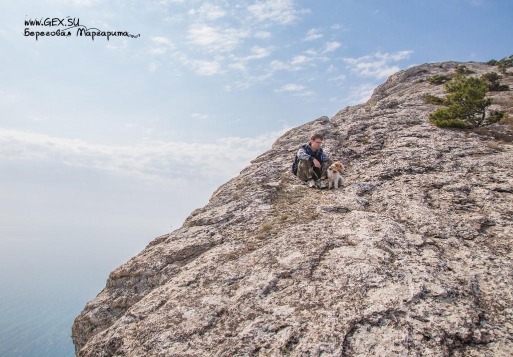 поход в горы с собакой