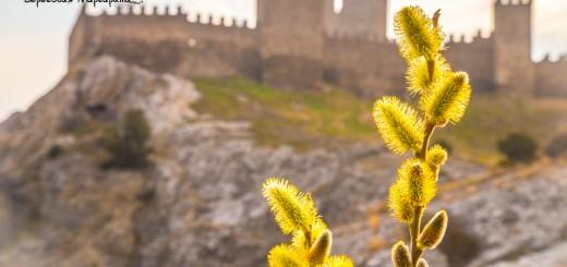 Генуэская крепость